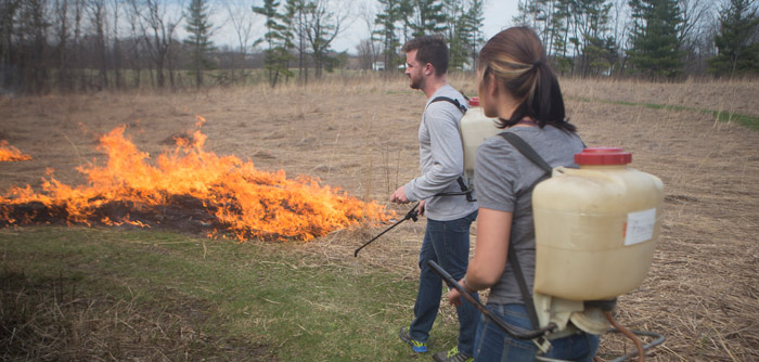 Controlled burn at Koinonia