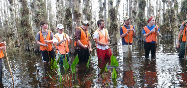 Environmental Students in a swamp